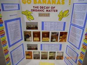 science olympiad poster soong